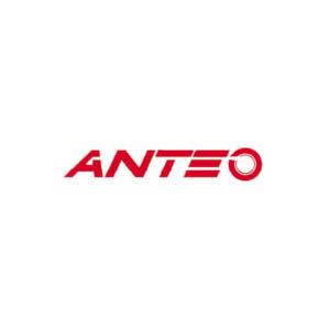 Logo Gomme Anteo