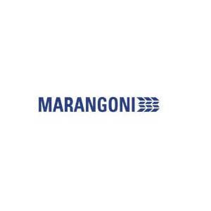 Logo Gomme Marangoni